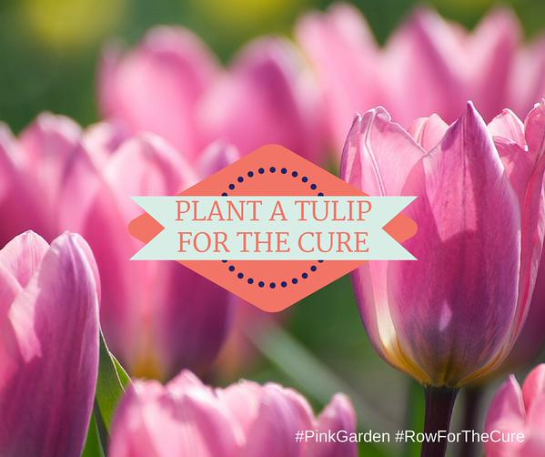 Plant A Tulip For The Cure